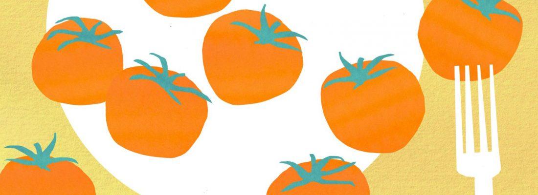 tomatoes illustration